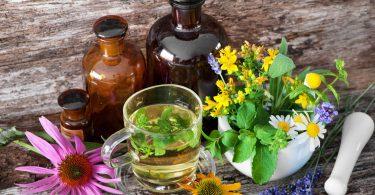 Caneca com chá herbal, vidros com extratos e plantas em cima de uma mesa de madeira.