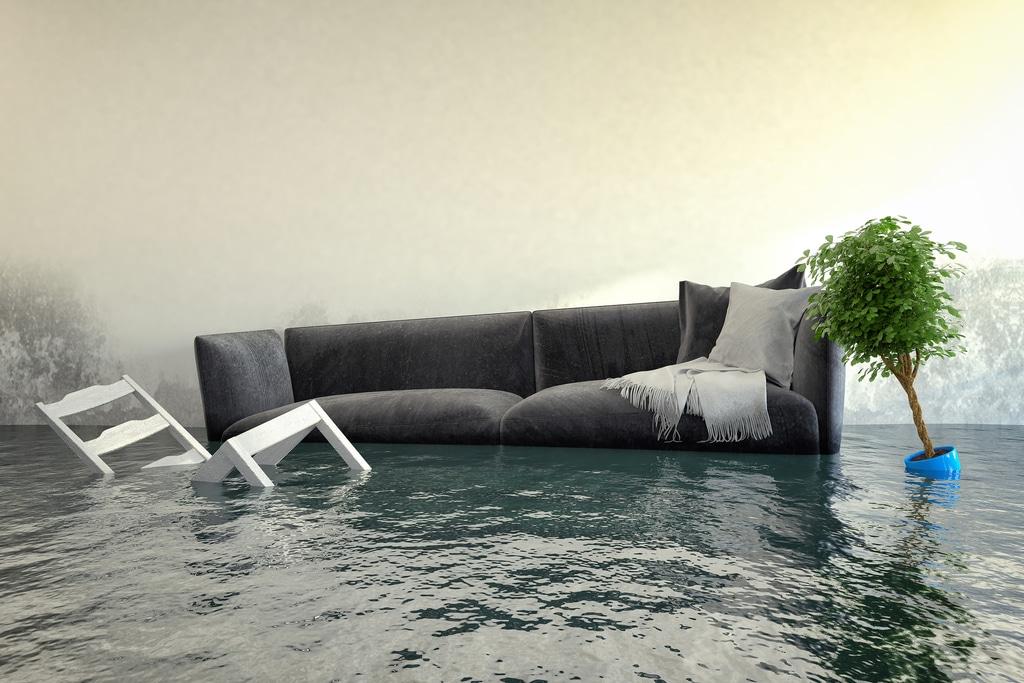 Enchente alaga sala com sofá, cadeira e vaso de planta.