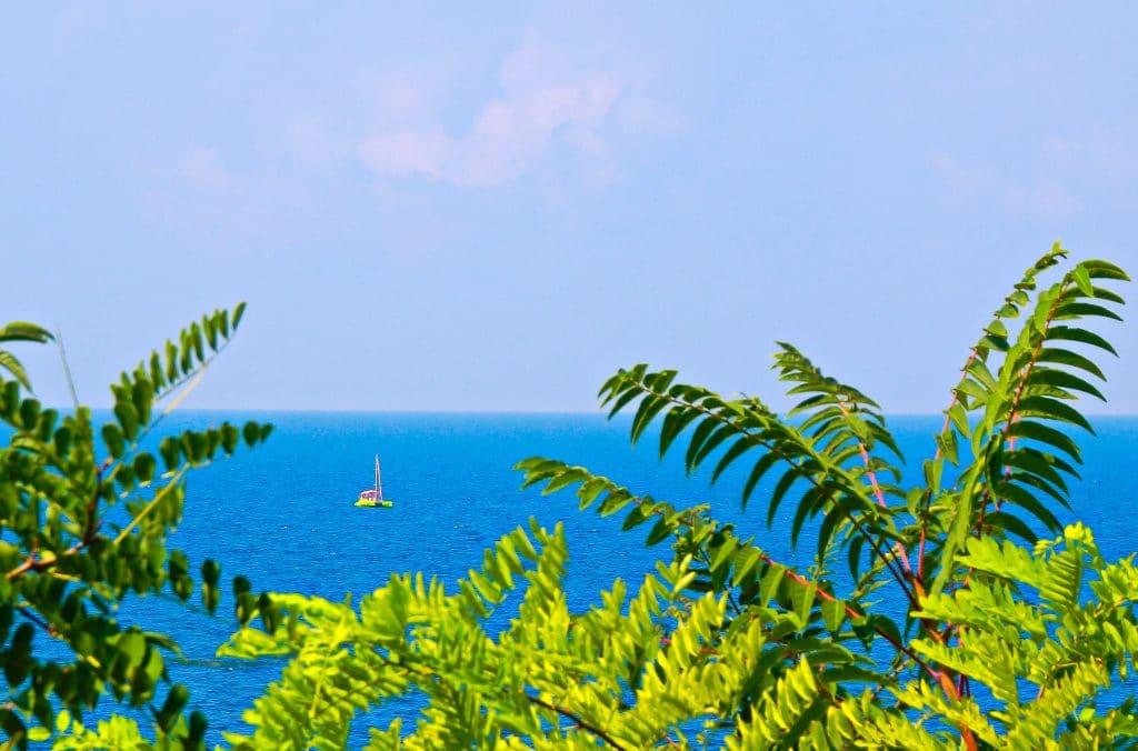 Mar calmo, agua azul. Um barquinho ao fundo e algumas folhagens na cor verde bem à frente da imagem do mar.