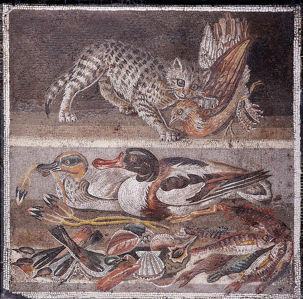 Mosaico de gato atacando perdiz, da Casa del Fauno em Pompéia.