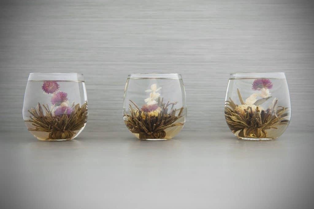 Três canecas de vidro com chá de Alforva. Os copos estão decorados com a flor da planta.