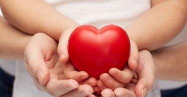 Mãos de pessoa adulta, com mãos de criança em cima, e no topo um coração de borracha.