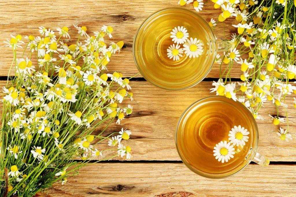 Chá de valeriana servido em duas canecas de vidros decorados com flores de margaridas. Os copos estão sobre uma mesa de madeira e ao lado de cada caneca um ramalhete de margaridas.