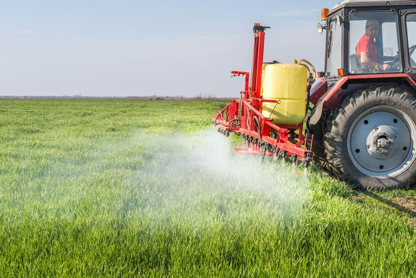 Trator pulverizando pesticidas em plantação de trigo.