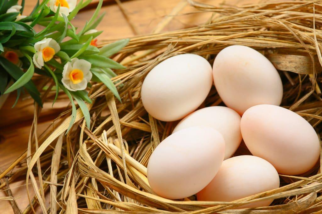 Meia dúzia de ovos brancos dentro de um cesto de palha. Ao lado um ramo de flores amarelas e brancas enfeitam o cesto.