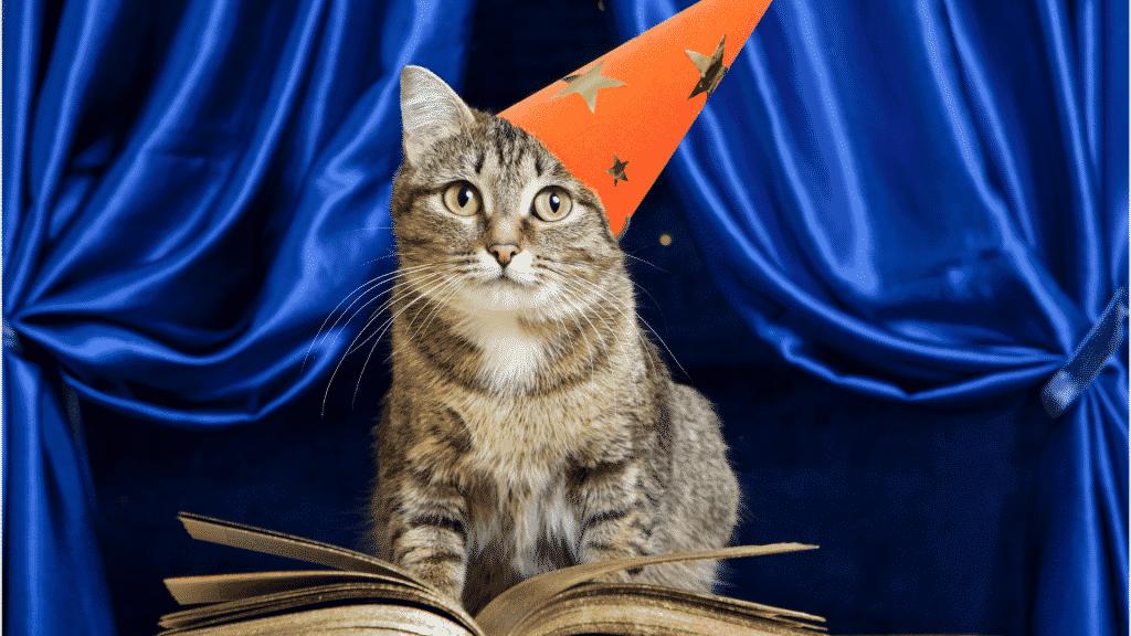 Gato usando chapéu de mago na frente de um livro de magia