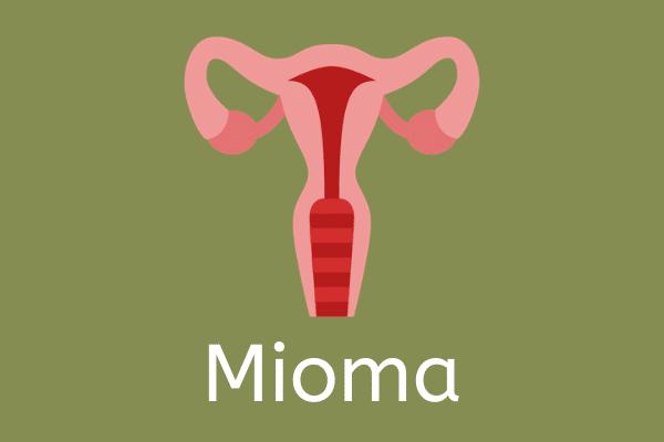Ilustração de útero com fundo verde escrito Mioma