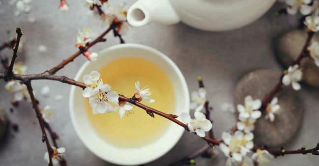 Chá branco.
