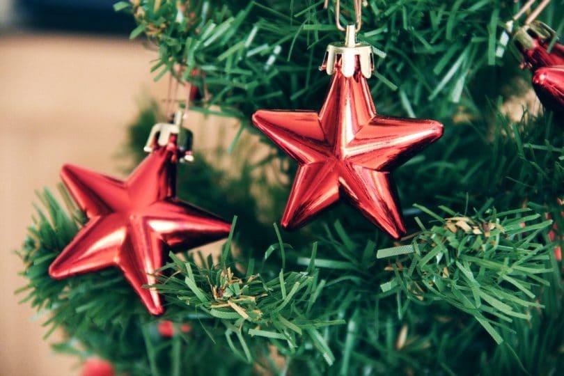 Detalhe em árvore de natal, com dois enfeites em formato de estrelas vermelhas.
