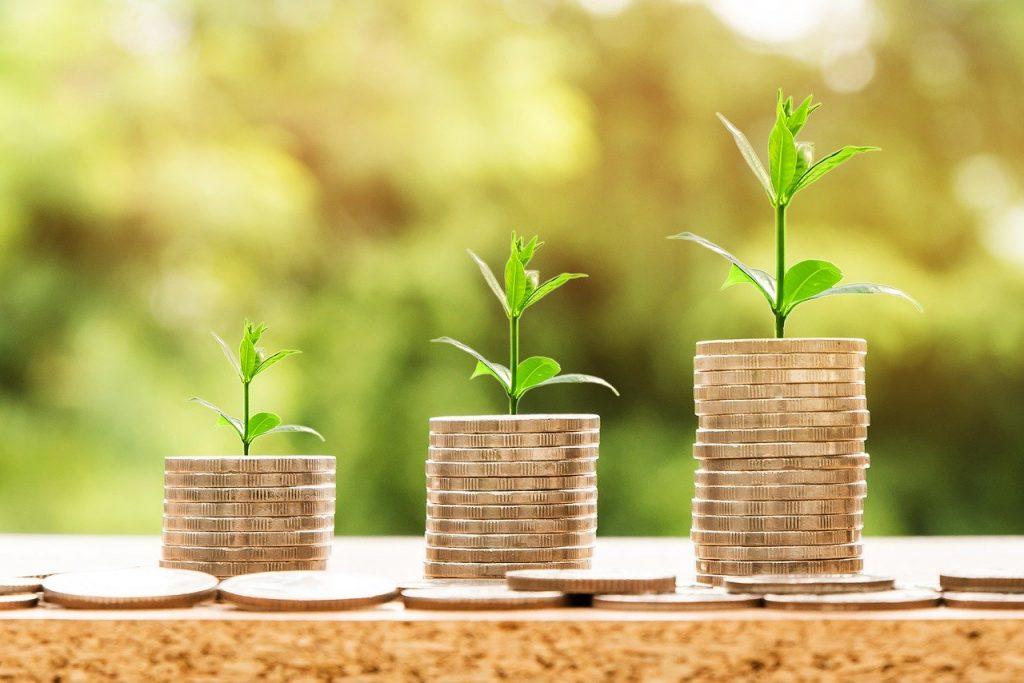 Três pilhas de moedas com uma pequena planta em cima. À medida que a planta cresce, a pilha de moedas cresce também.