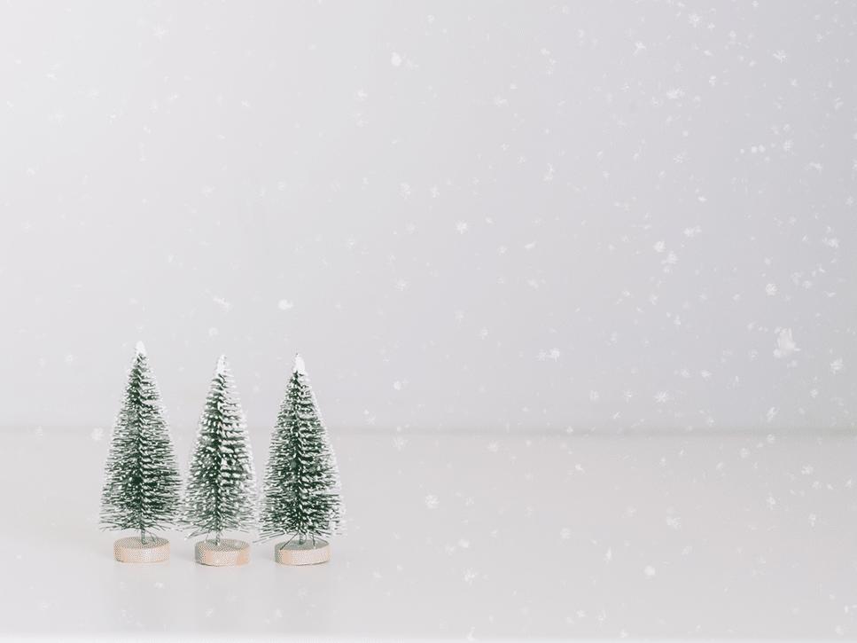 Três pinheiros em miniatura em um ambiente totalmente branco, com neve falsa caindo.
