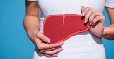 Mulher branca segurando ilustração de papel de um fígado.