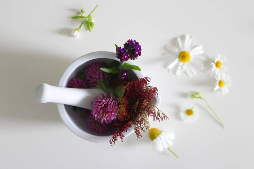 Ingredientes florais para a produção de remédios caseiros para a sinusite. São flores de diversos tipos dispostas em um pote branco para serem masseradas.
