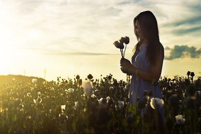 Mulher segurando flores em campo com sol refletindo ao fundo