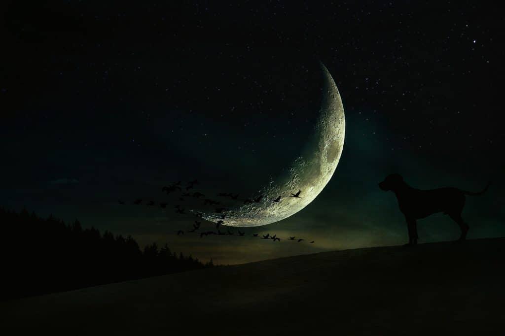 Imagem da Lua Crescente.