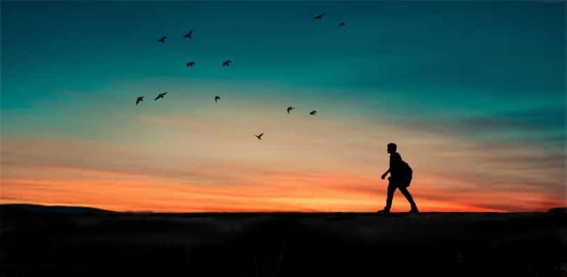 Silhueta de homem caminhando com pôr-do-sol e pássaros ao fundo
