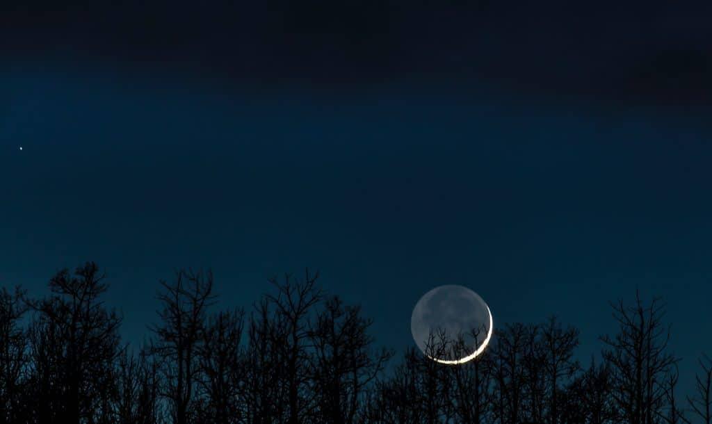 Lua crescente vista em um céu estrelado, sobre uma floresta.