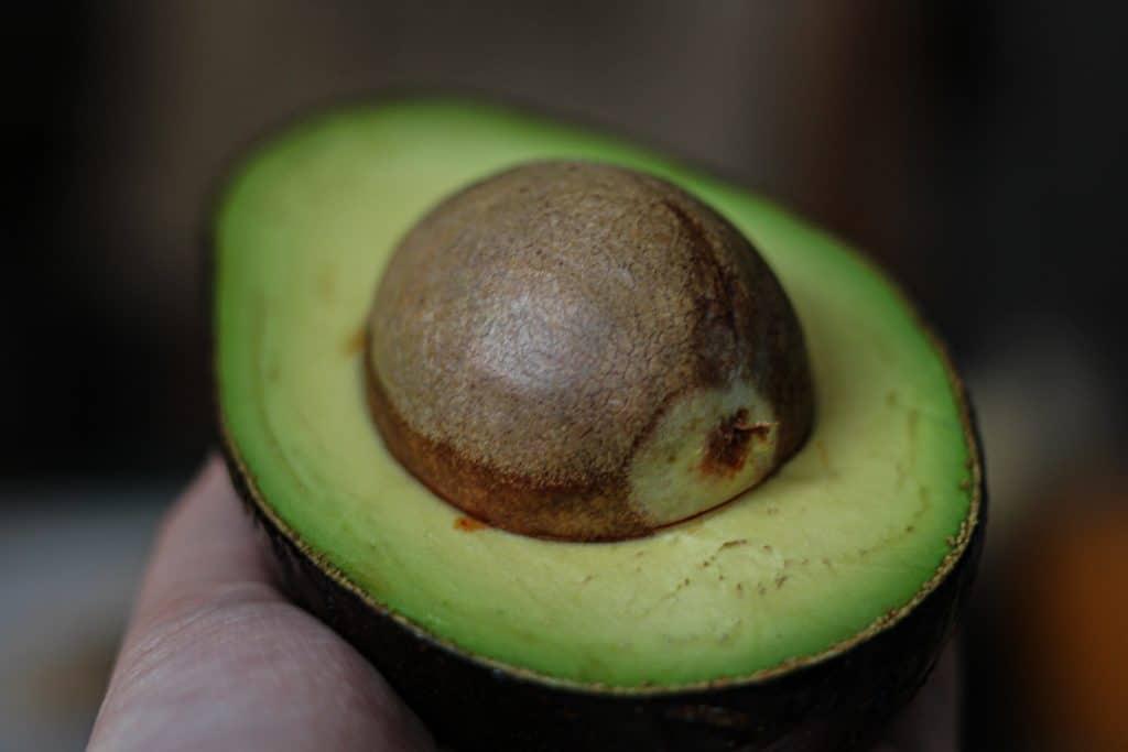 Fotografia de uma mão segurando um abacate cortado ao meio, ainda com o caroço.