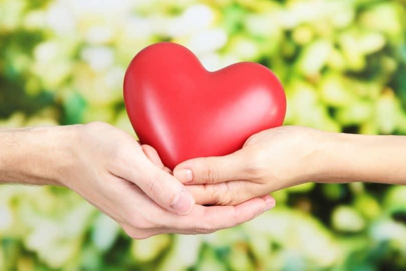 Duas mãos segurando um coração de borracha, com plantas ao fundo.
