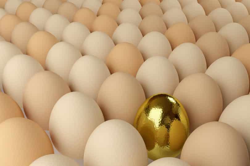 Ovo dourado entre outros ovos.