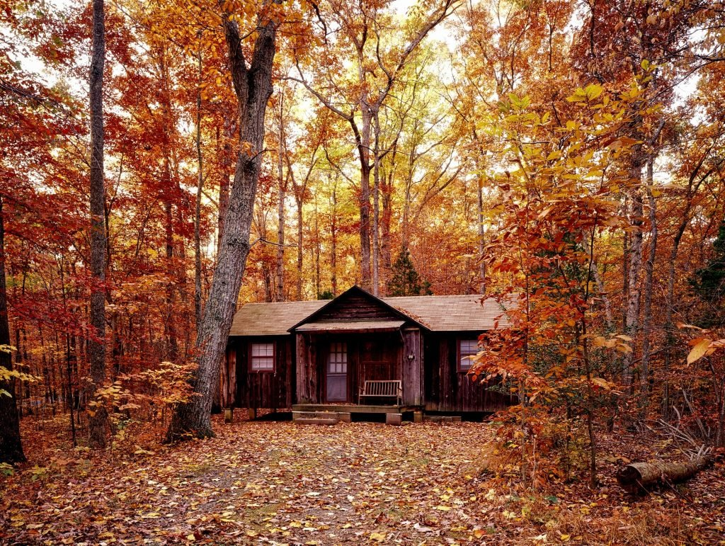 Cabana no meio da floresta no outono