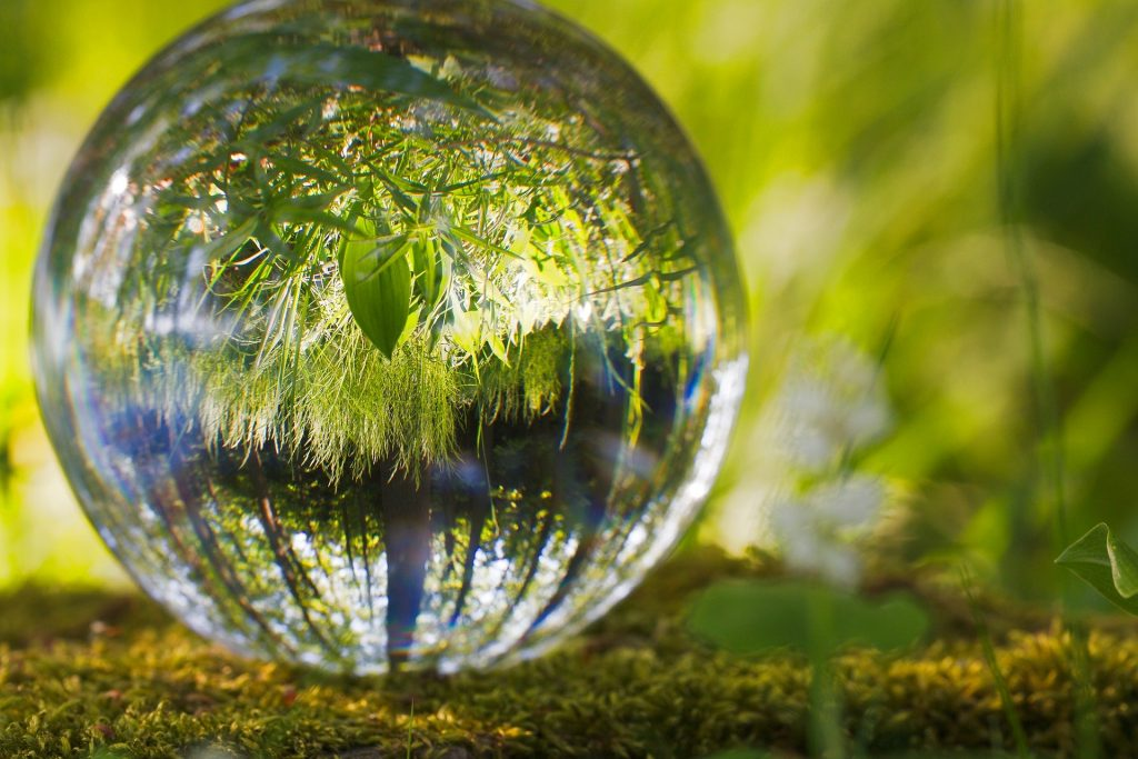 Imagem de uma bola de cristal e dentro dela imagens de folhagens.