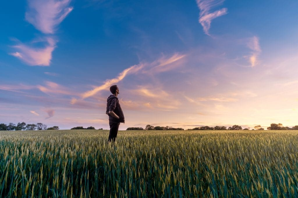 Homem em pé no gramado olhando para o céu