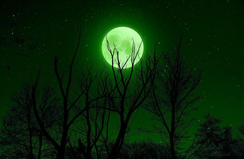 Imagem de uma floresta e ao fundo a lua cheia em uma noite estrelada.