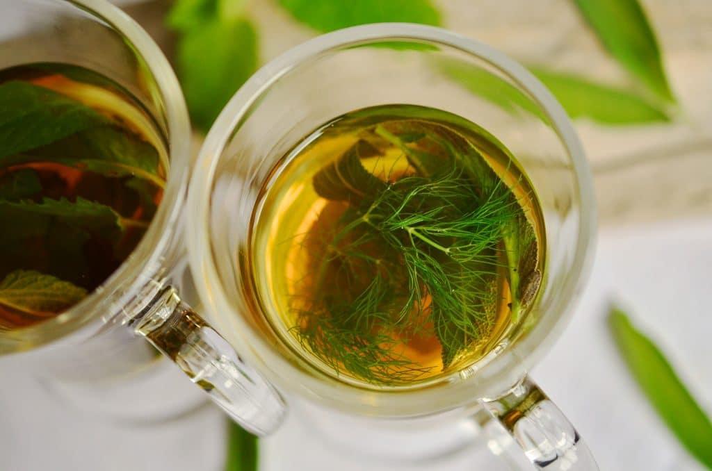 Chá de boldo servido em duas canecas de vidro.