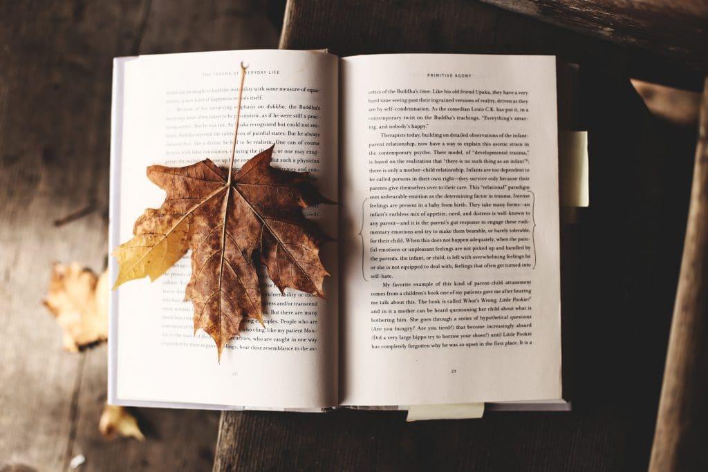 Livro aberto com folha de outono em cima