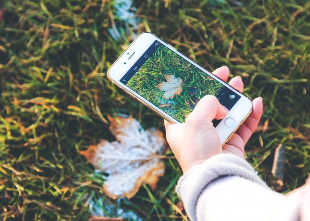 Mão segurando celular tirando foto de folha de outono no chão em meio a grama