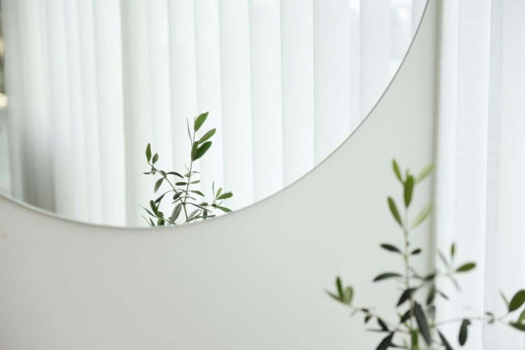 Sala com espelho redondo e uma planta ao lado