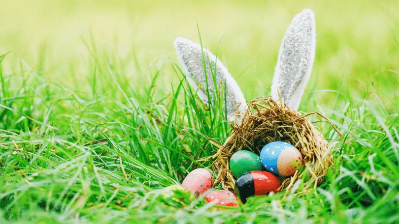 Ovos de páscoa coloridos na grama com um coelho escondido atrás deles