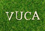 As letras V,U,C e A posicionadas lado a lado em grama.