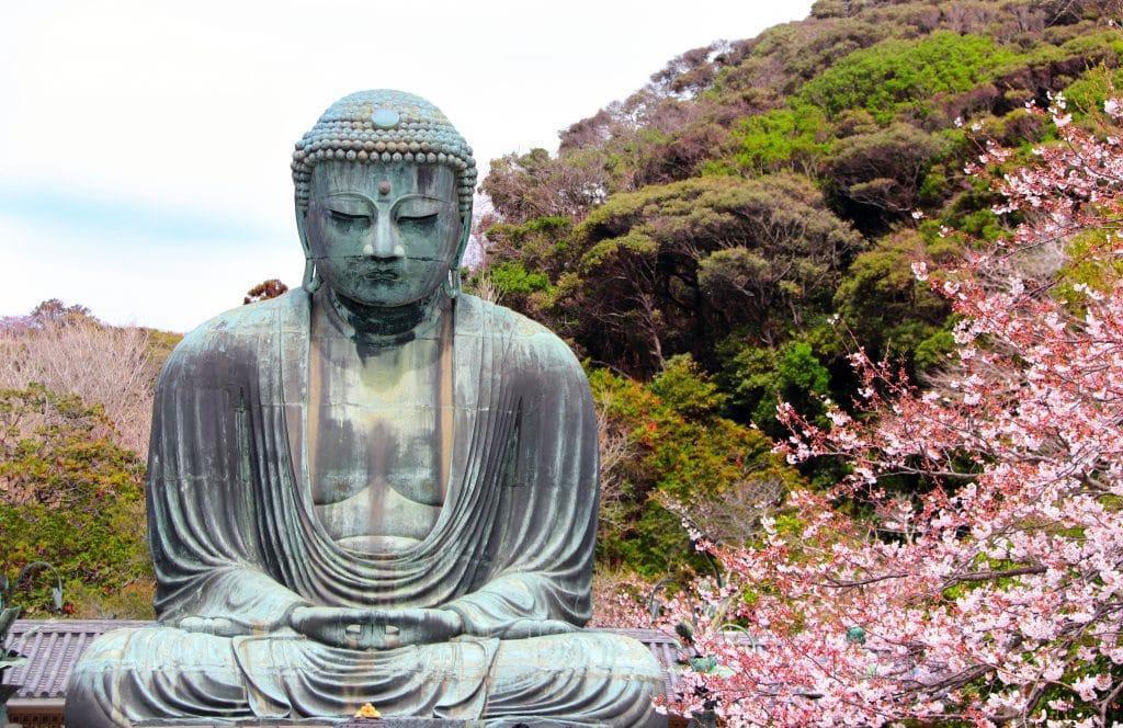 Imagem grande da estátua de Budaem um templo japonês. Ao fundo da imagem uma serra com muitas árvores verdes e uma flor de cerejeira na cor rosa.