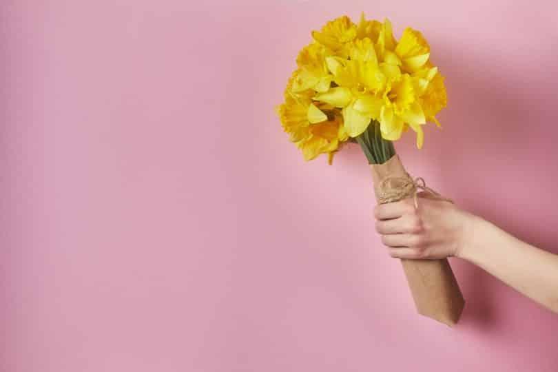 Recorte de uma mão segurando flores amarelas.