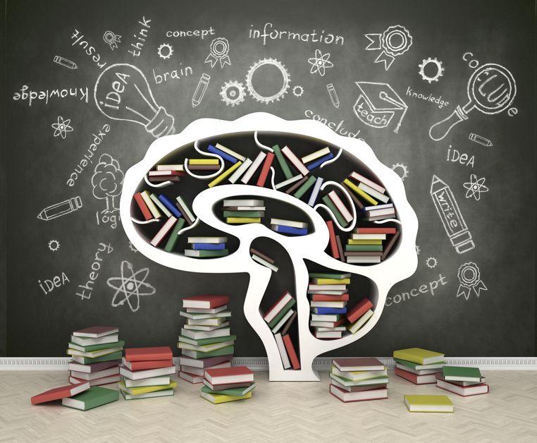Estante de livros em formato de cérebro humano. Vários livros no chão ao redor da estante, que já está cheia, e ao fundo uma lousa com desenhos e escritas sobre conhecimento.