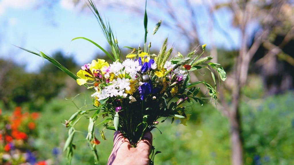 Pessoa segurando um buquê de flores coloridas