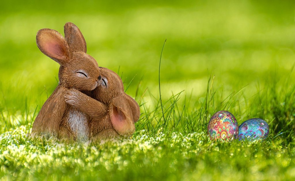 Imagem de dois coelhos em um campo verde. Eles estão se abraçando. Ao lado dois ovos de Páscoa coloridos.