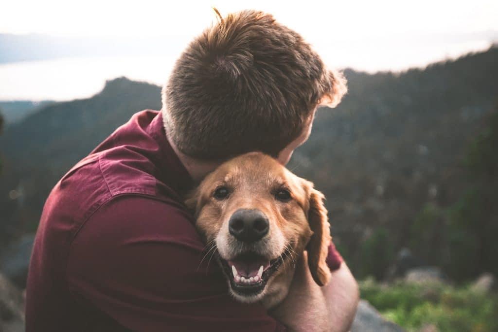 Homem abraçado com um cachorro em um parque repleto de árvores.