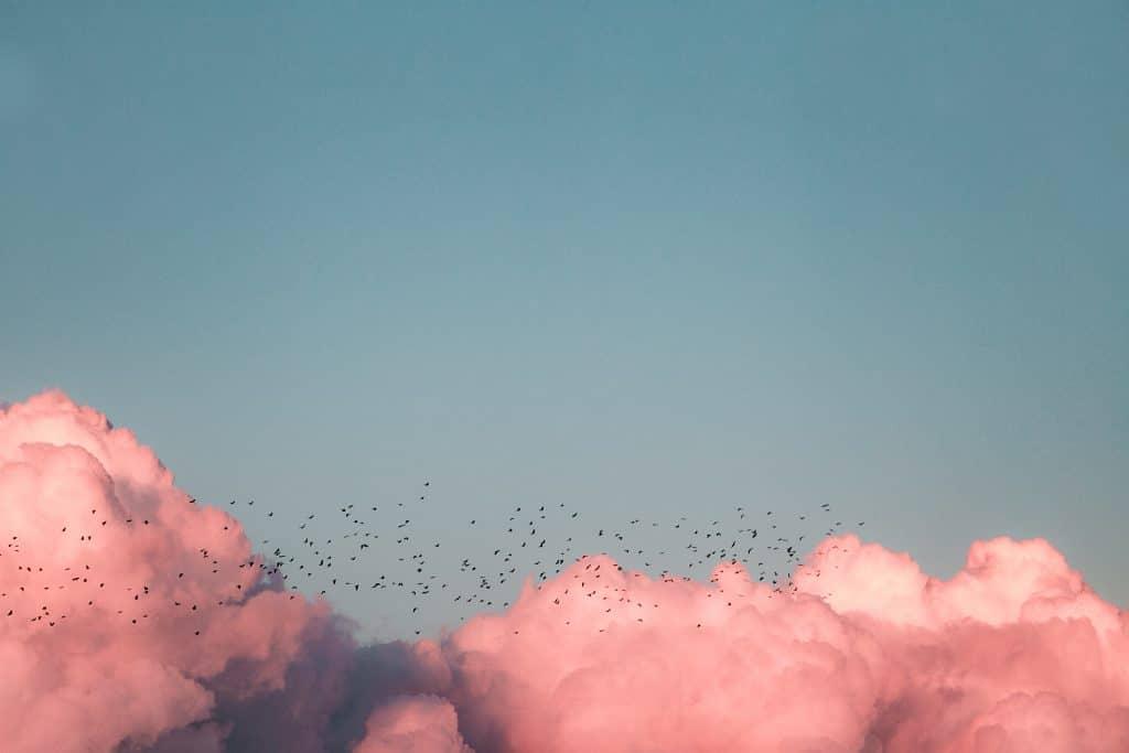 Céu ensolarado é visto acima de uma camada de nuvens, com pássaros voando.