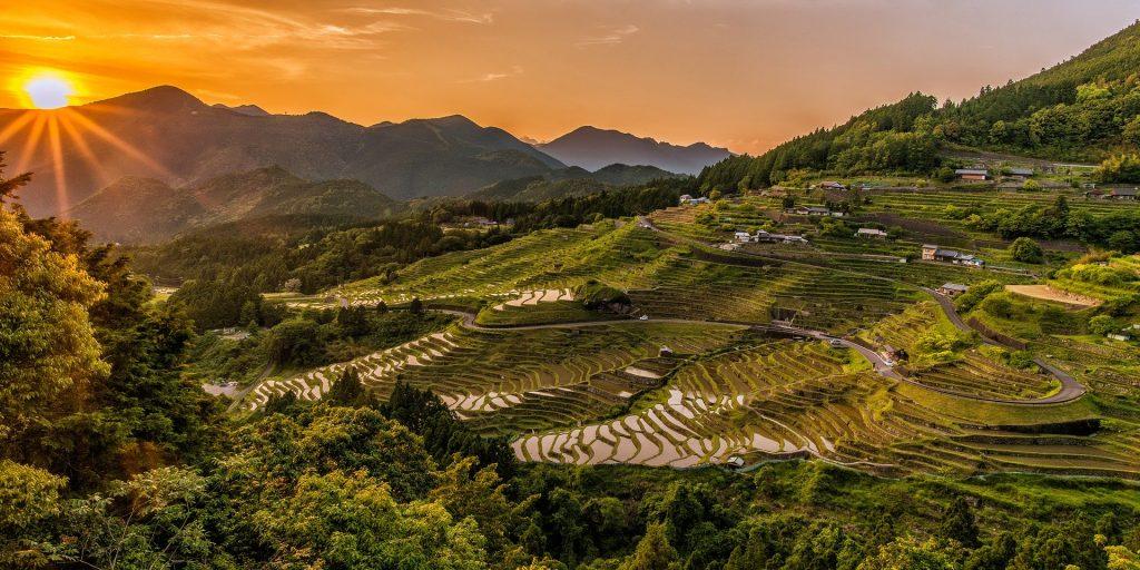 Imagem de um campo bem verdinho de terraços de arroz. Ao fundo lindas montanhas com o por do sol.
