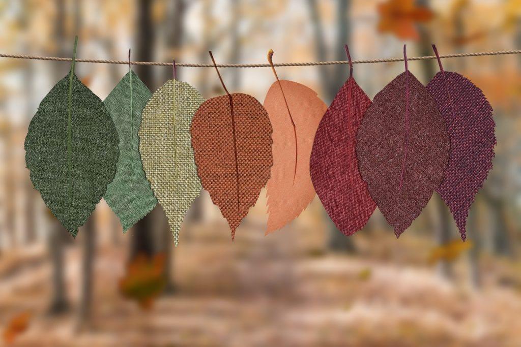 Varal com folhas de outono em diversas cores