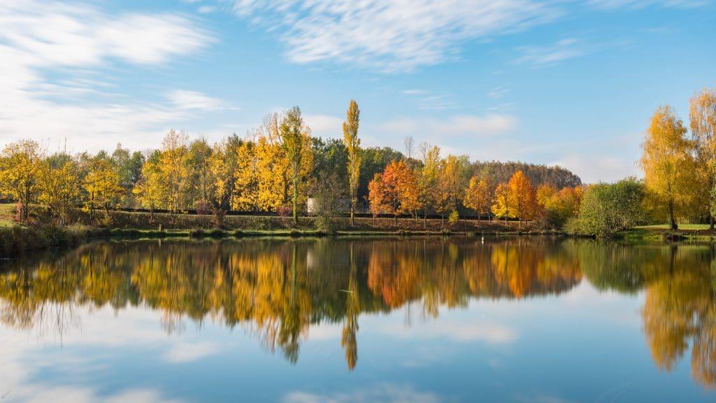 Imagem de um rio junto a um parque natural, cercado por árvores de outono com folhas um pouco secas, em um dia ensolarado.