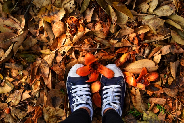 Pés vistos de cima em folhas de outono com flor na ponta
