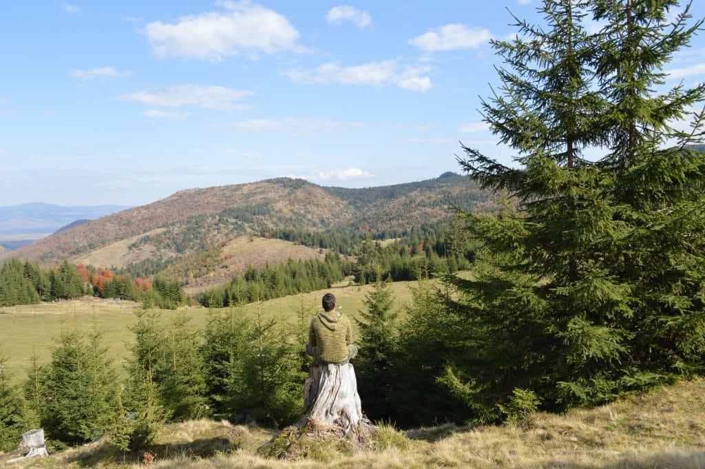 Homem sentado em um tronco de árvore olhando para a paisagem à sua frente de montanhas, árvores e gramado.