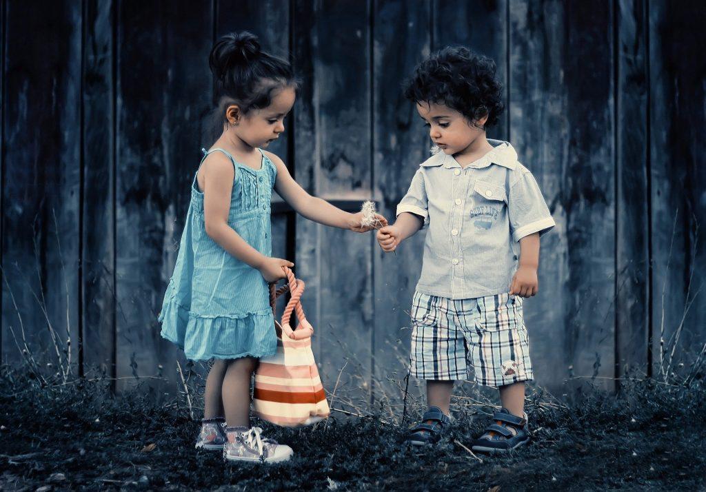 Menina dando para um menino uma flor dente de leão