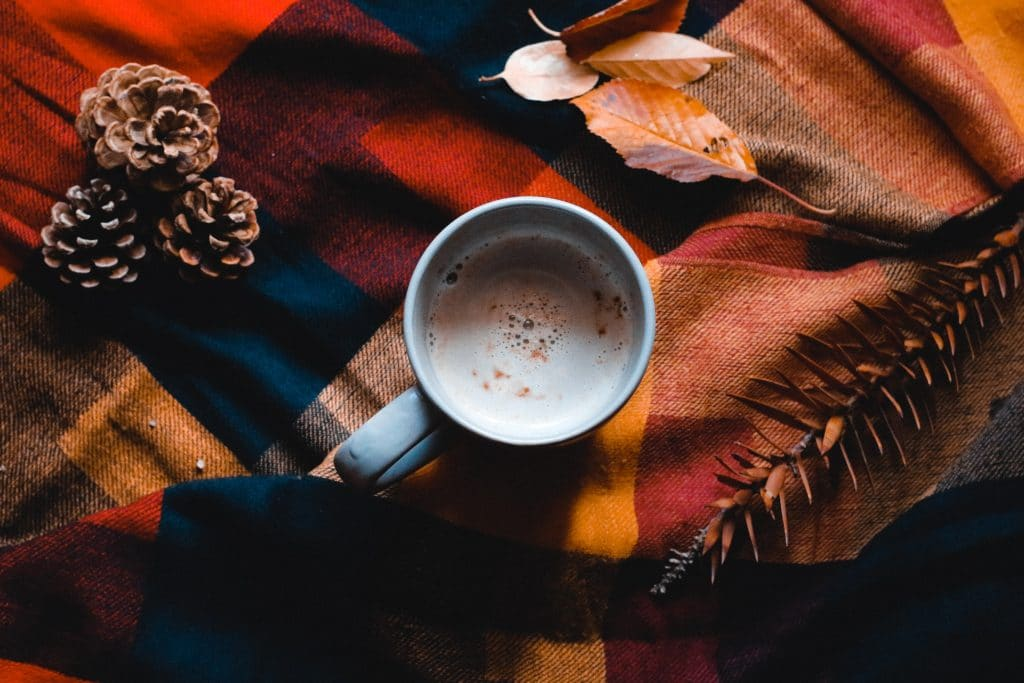 Xícara com leite vista de cima em manta xadrez com folhas de outono em volta