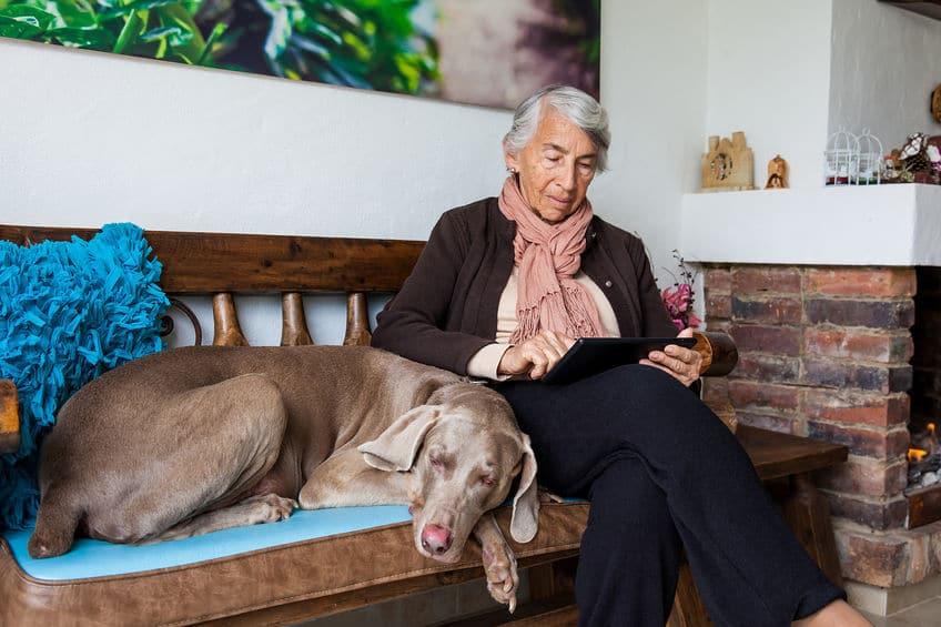 Mulher idosa em casa, com um cachorro deitado ao seu lado. Ela está com as pernas cruzadas e usando um tablet que está apoiado em suas coxas.