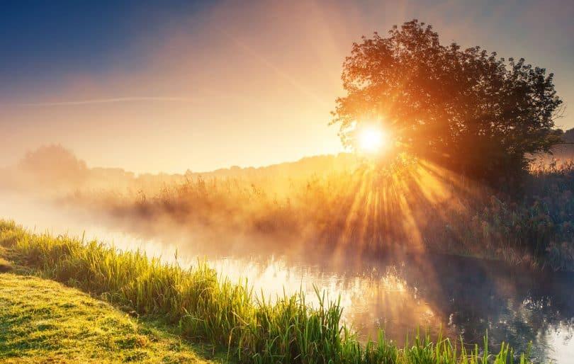 Luz solar em ambiente externo com rio, árvores e grama.